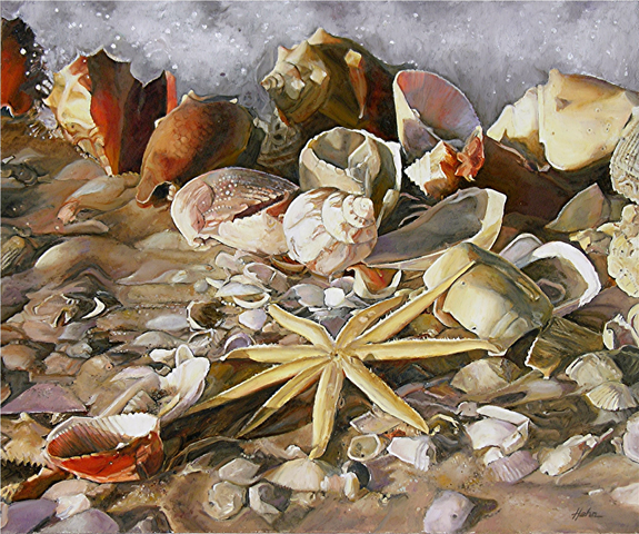group of brilliant colored seashells with starfish on sand